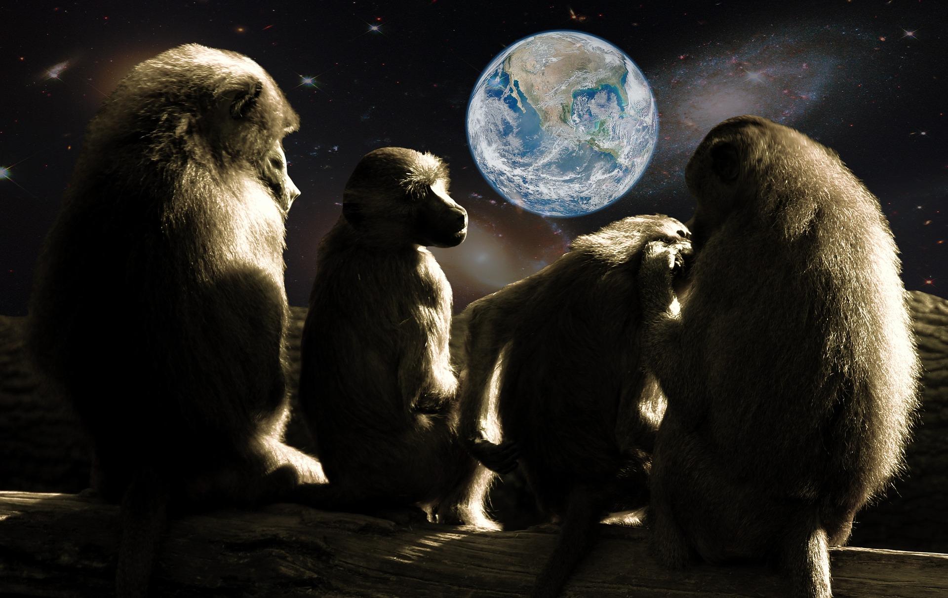 地球とサル